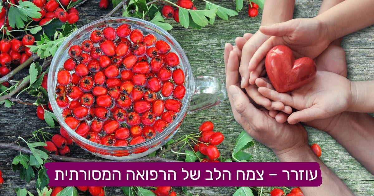 עוזרר - צמח הלב של הרפואנה מסורתית